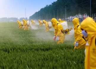 unia-zakaz-pestycydy.jpg