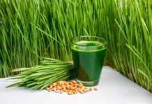 sok-z-trawy-pszenicznej.jpg