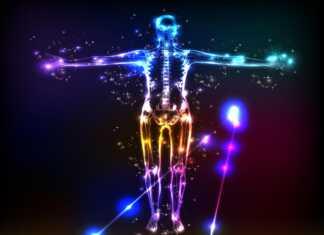 energetyka-części-ciała.jpg