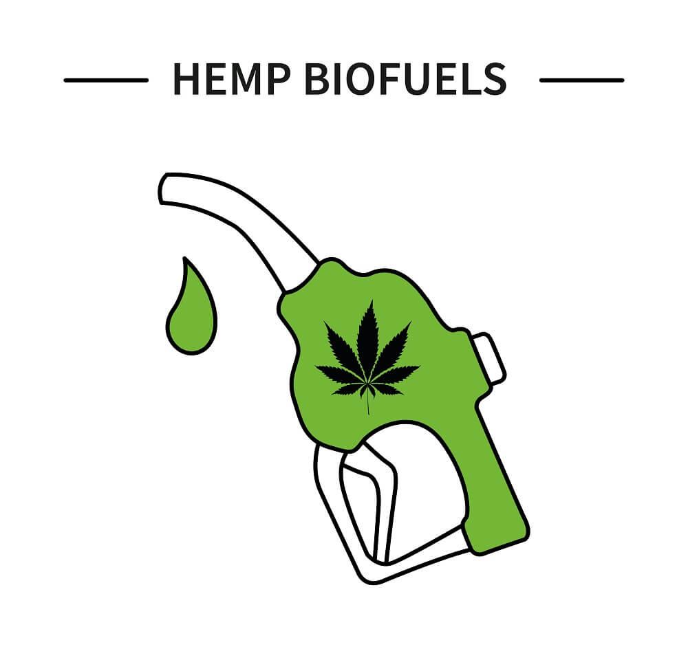biopaliwa-konopne.jpg