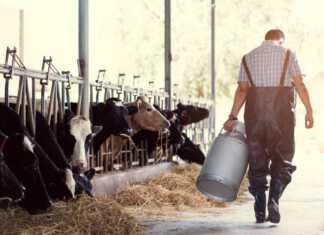 rolnik-zapachy.jpg