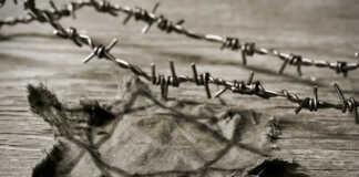 izraelscy-uczniowie-polski-holokaust.jpg