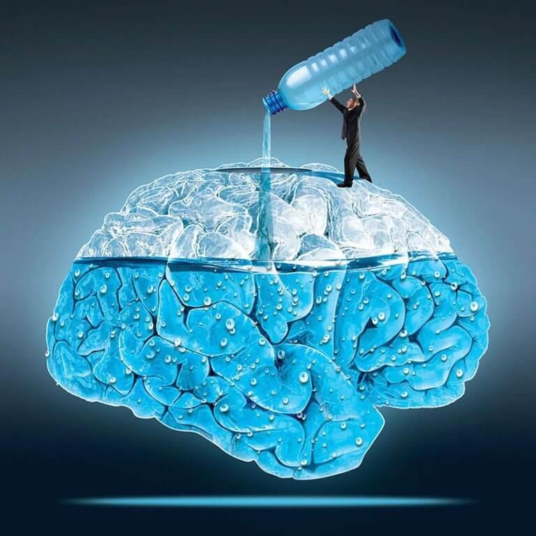 zdrowy-mózg.jpg