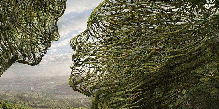 połączenie-z-naturą.jpg