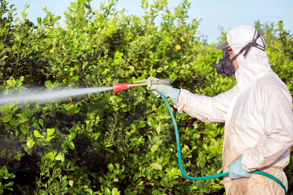 opryski-pestycydy.jpg