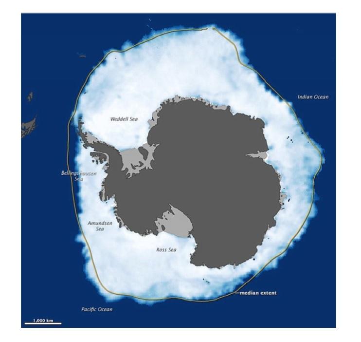 arktyka.jpg