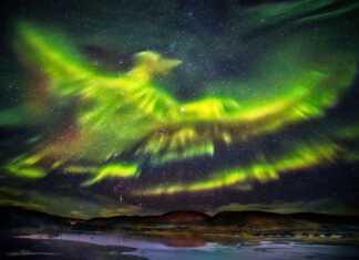 zorza-polarna-feniks.jpg