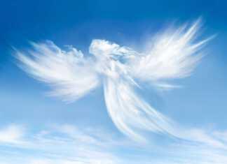 anielskie-przekazy.jpg