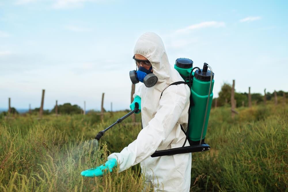 pestycydy-płody-rolne.jpg
