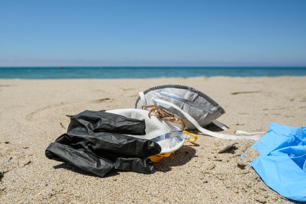 zuzyte-rękawiczki-morze.jpg