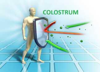 colostrum.jpg