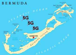 bermudy-5g.jpg
