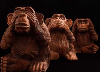 trzy-mądre-małpy.jpg