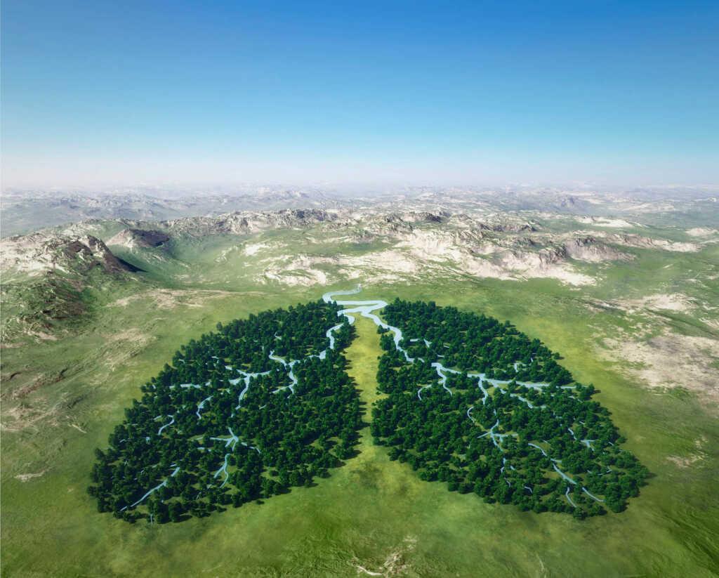 ziemia żyjący organizm