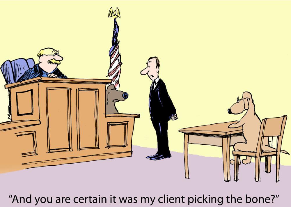 Prawo naturalne sądownictwo