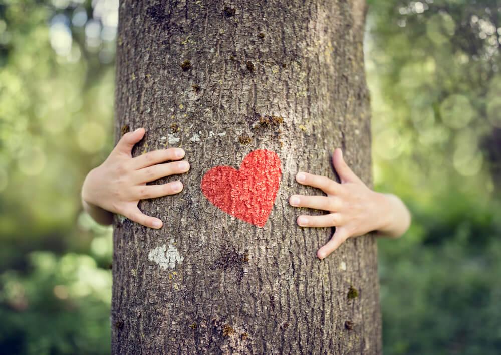 Sylwoterapia przytulanie drzew
